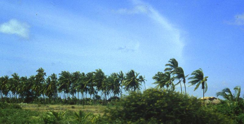 Along Somali coast