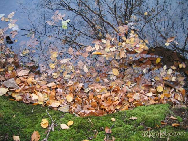 Green Hills Lake, PA 4