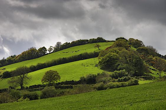Merlins Hill
