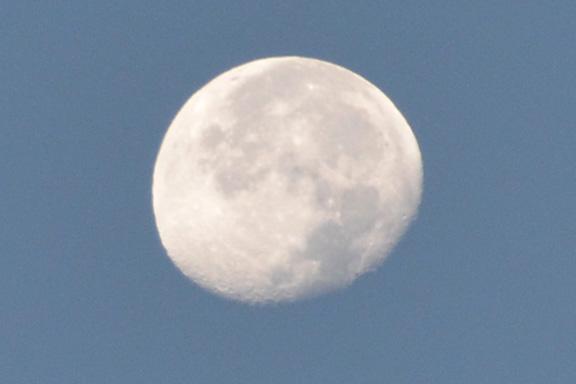 Dawn Moon  8016
