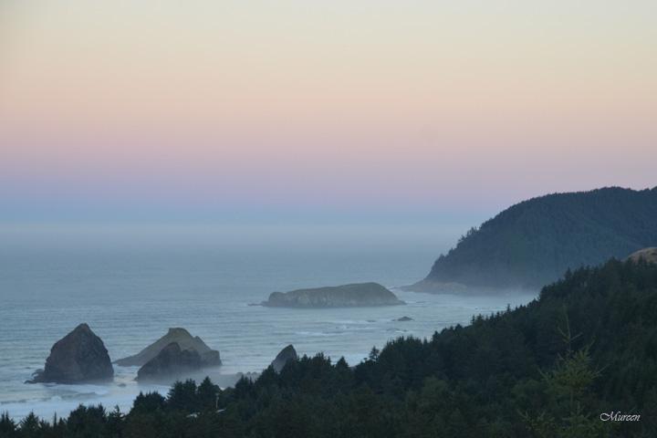 Cape Dawn 7988