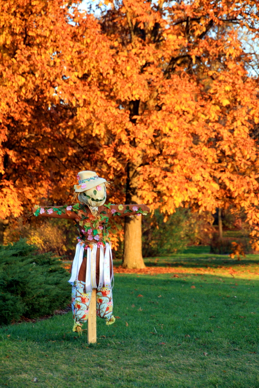 Morton Arboretum, Lisle, IL - fall colors 2012 - Scarecrow trail