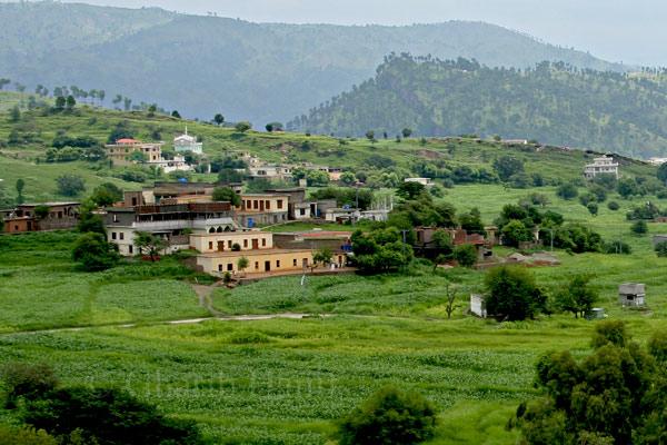 Charohi