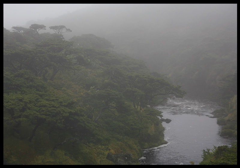 Often foggy on central parts of Flores