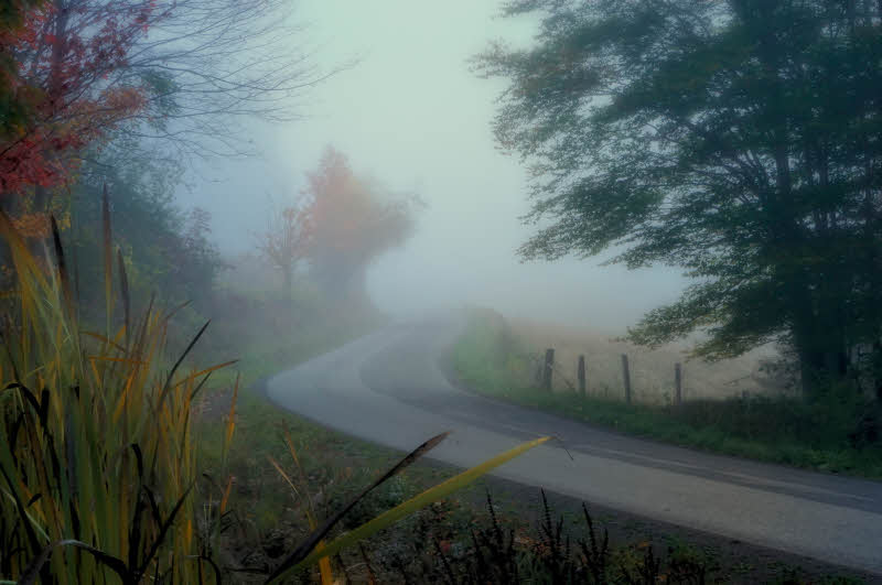 10/14/08 - Misty Dawn