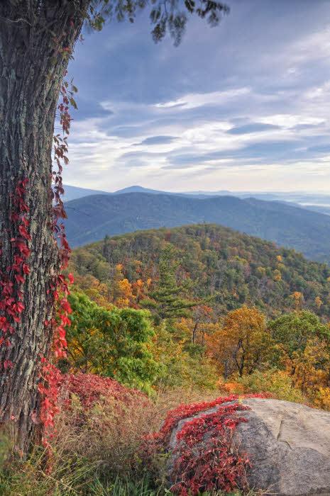 10/18/08 - Blue Ridge Autumn