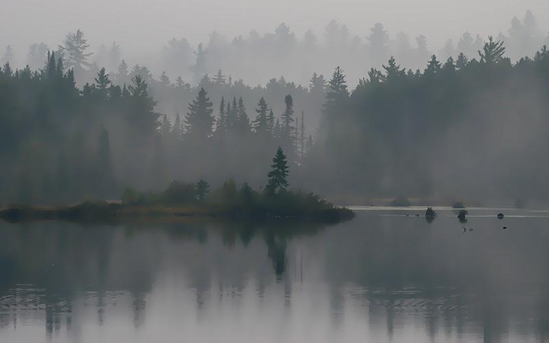 IMG_4289 Mist.jpg