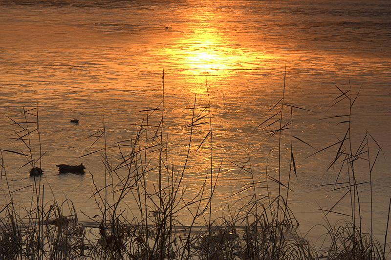 The ice edge - Loch Kinord