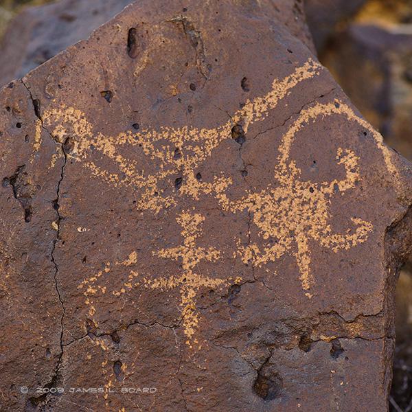 Bird & Lizard Petroglyphs
