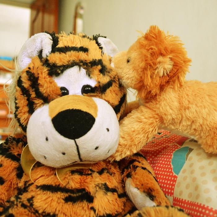 Communication - Lion Tiger 2