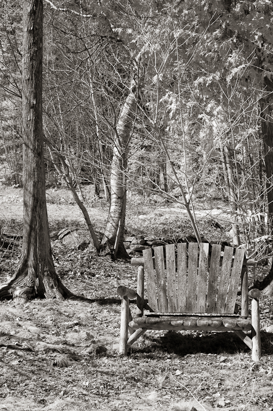 IR Bench, Early Spring