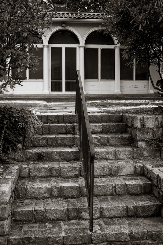 Steps Up from Rose Garden, monochrome