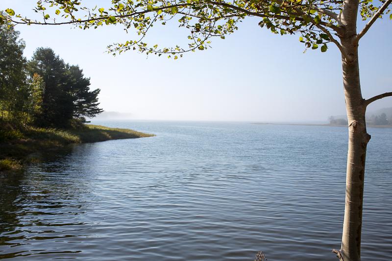 Fog on Morgan Bay
