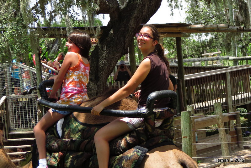 BETHANY AND KATIE ON CAMEL