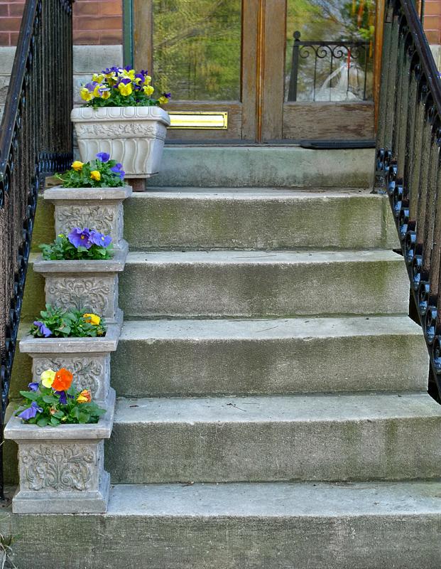 Stairs in Bloom (Changing Seasons Challenge)