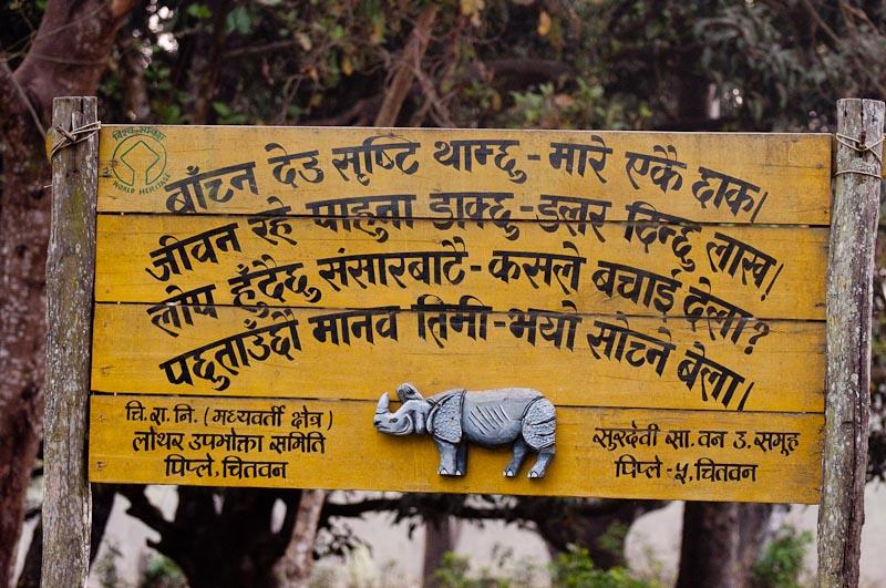 Help Save the Rhino!