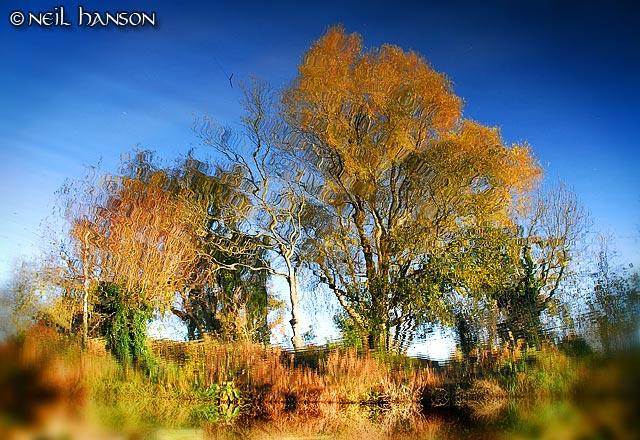 Autumn Reflects