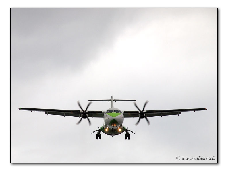 landing / Im Landeanflug (3247)