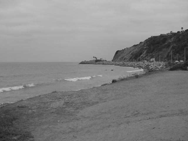 black & white Malibu ocean