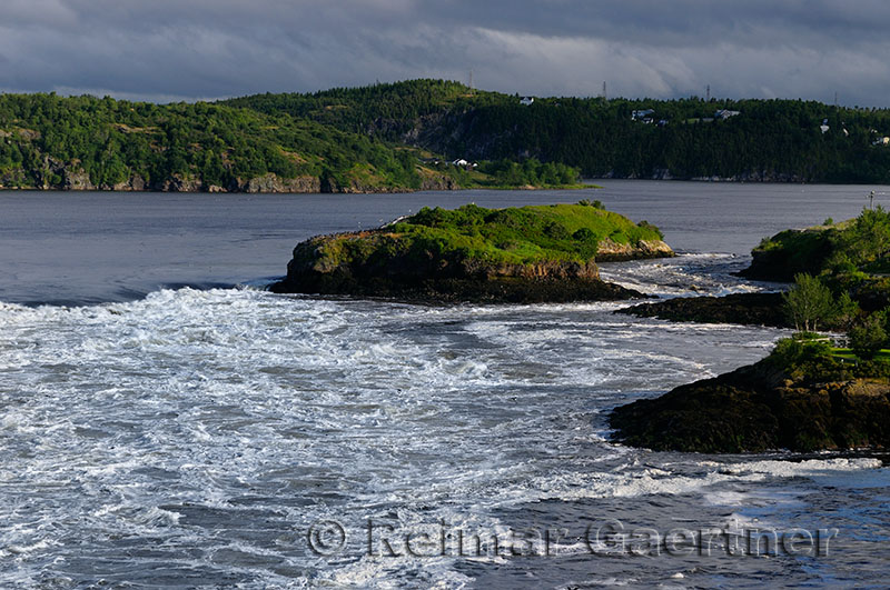 Reversing Falls at dawn in Saint John New Brunswick at Bay of Fundy low tide