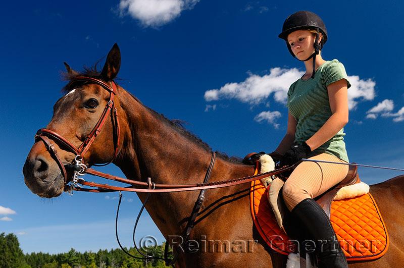 243 Rider.jpg