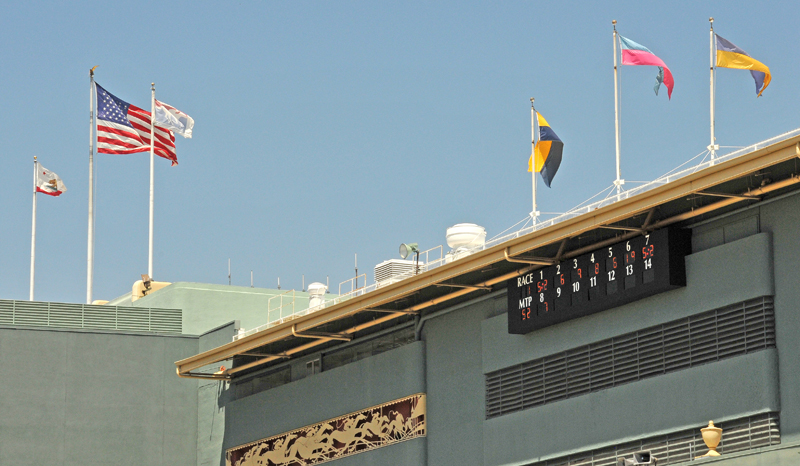 Flags at Central Building