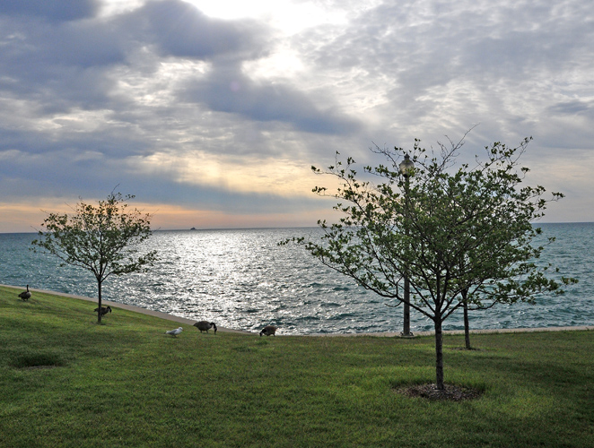 Lakefront -- early morning!