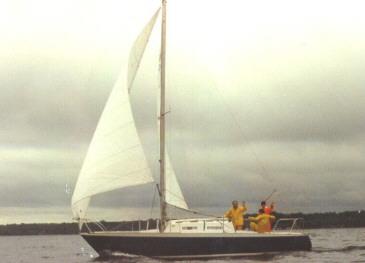 NIAGARA 30