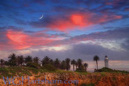 Vicente Moonlight