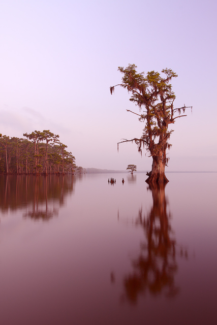 The Lake in 09