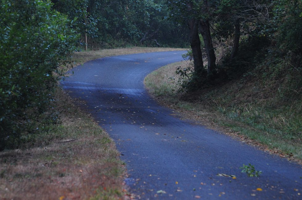 Road to the Clem Miller Education Center