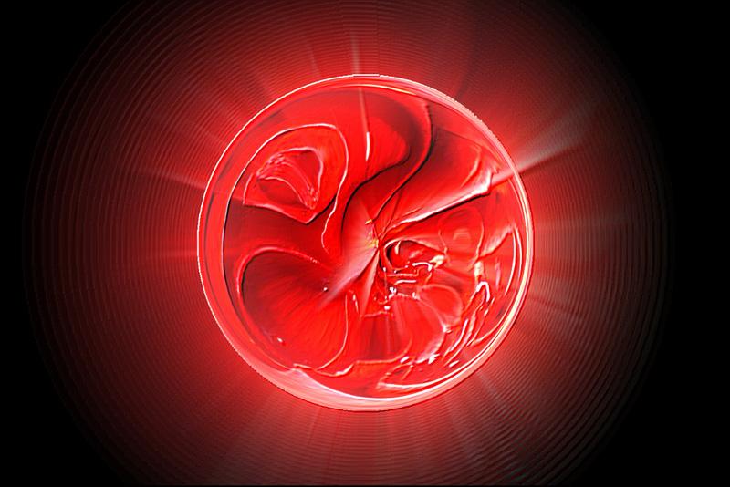 rose in mystic sphere PDpro.jpg