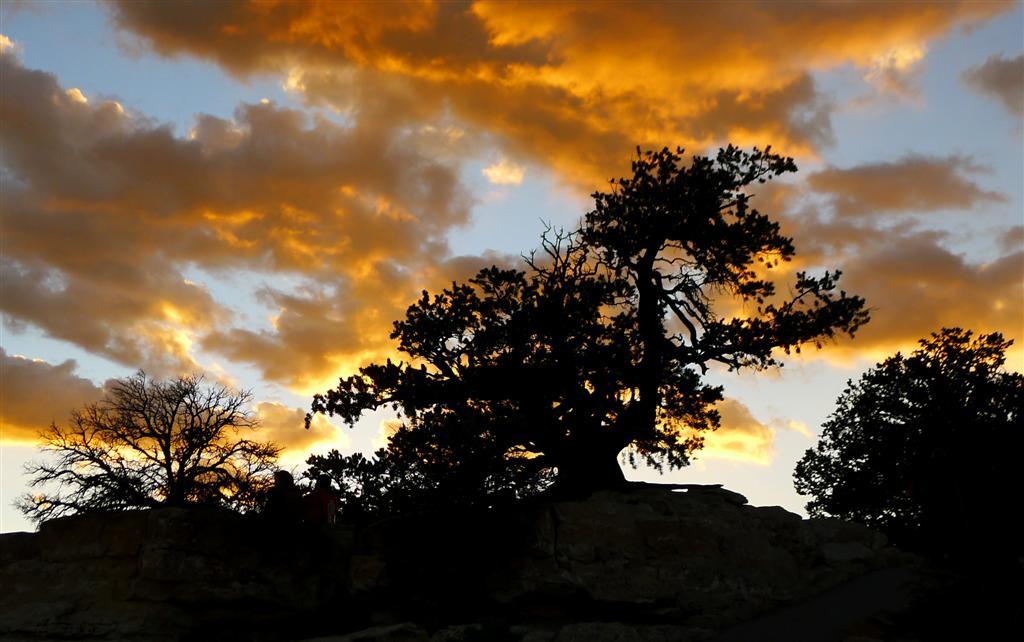 591 Grand Canyon Bright Angel Point Sunset 16.jpg
