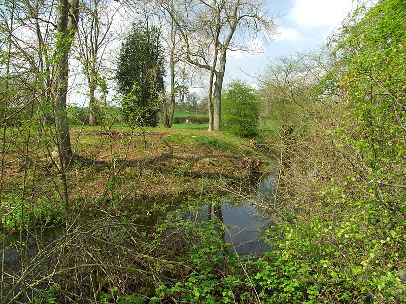 Motte with fully wet moat at Edwyn Ralph.