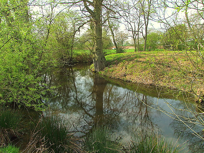 Edwyn Ralph motte with fully wet moat.
