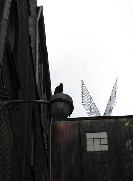 Industrial wings