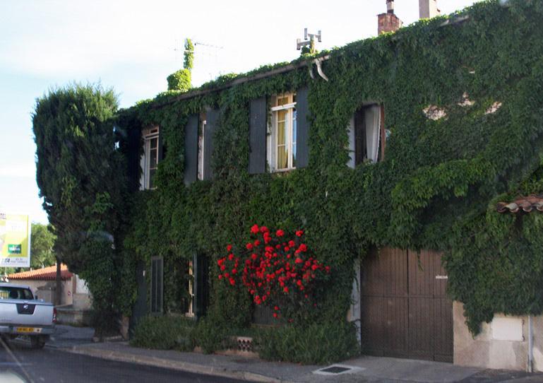 house in South France13.jpg
