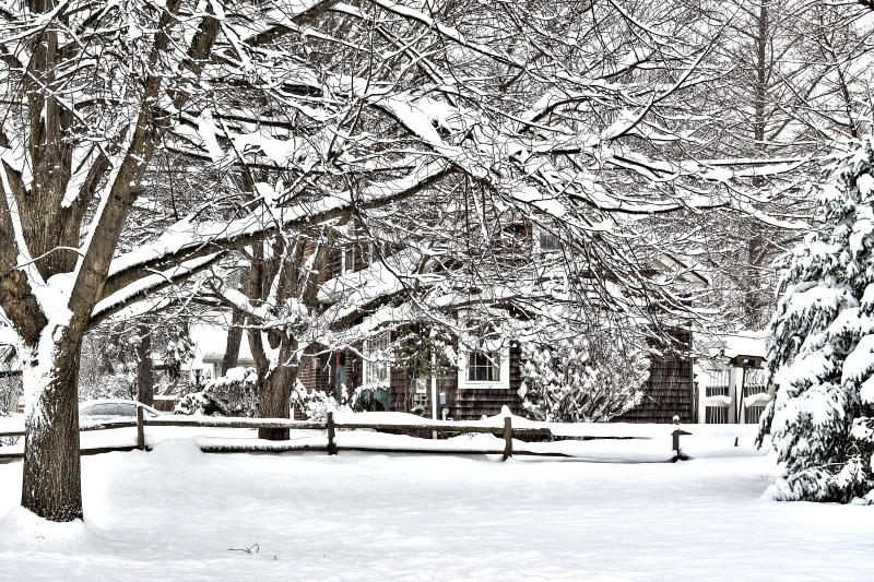Winter on Gleed Ave