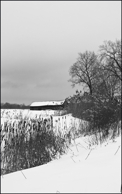 Paysage Hivernal_Winter Landscape