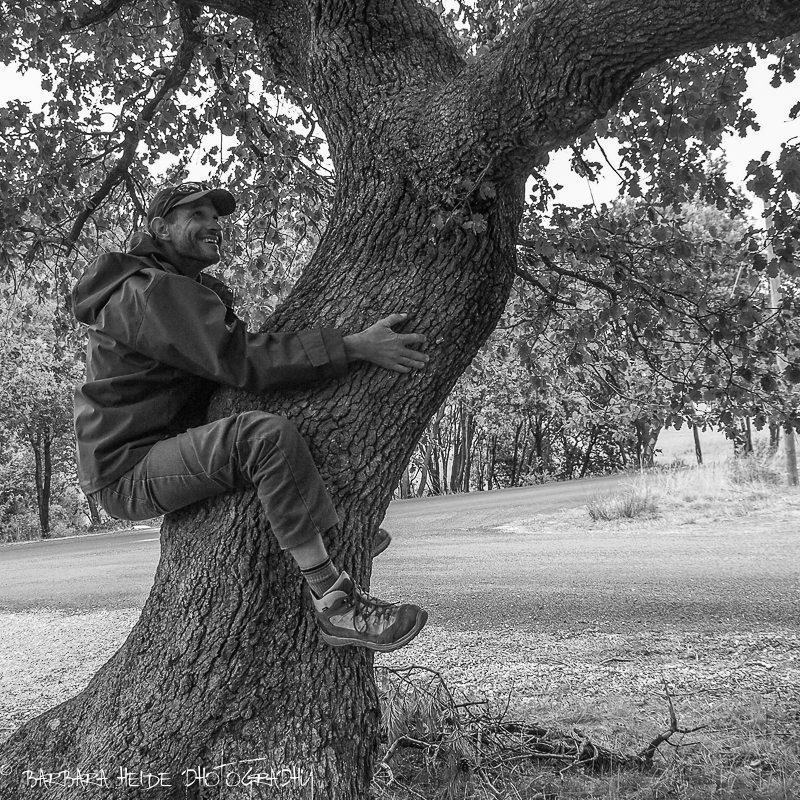 The Tree-Hugger