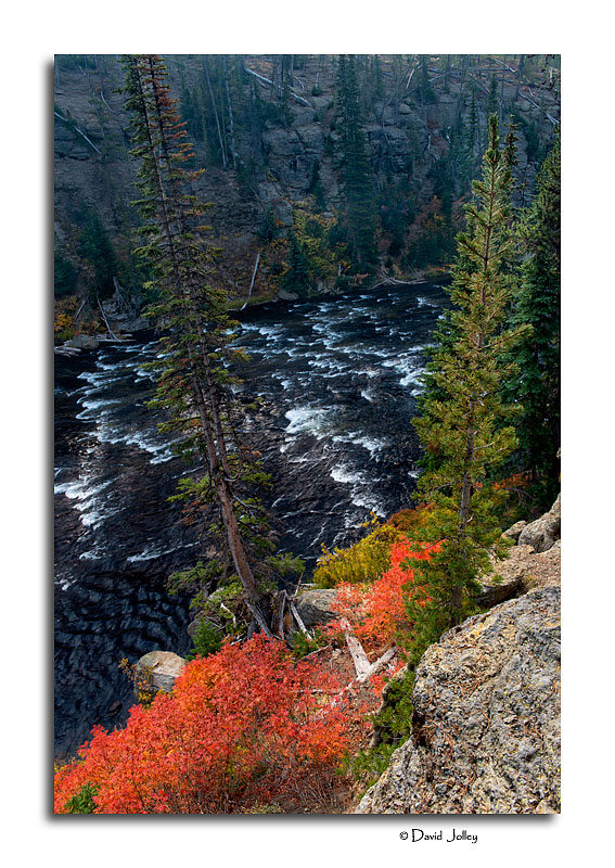 Lewis River Canyon