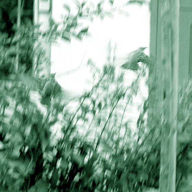 13-OCT-2010