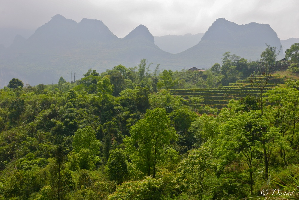 Peaks near Tinh Tuc. Cao Bang District.