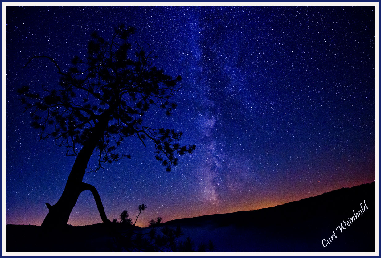 Milky Way & Red Pine