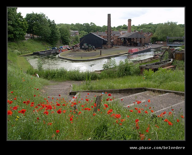 Canal Basin Poppies, Black Country Museum