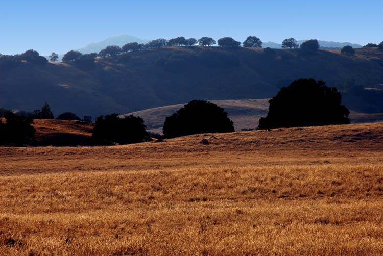 Our Beautiful San Diego County Back Country