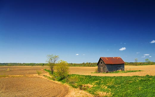 Old Barn In A Field 48462