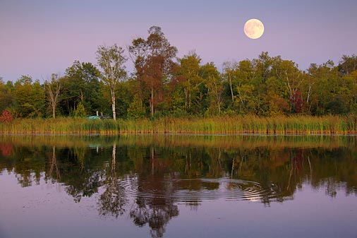 Scugog River Moonrise 20090903