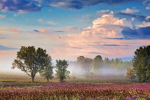Landscape At Sunrise 20454