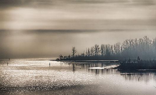 Foggy Rideau Canal 20120331